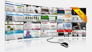 Online business websites